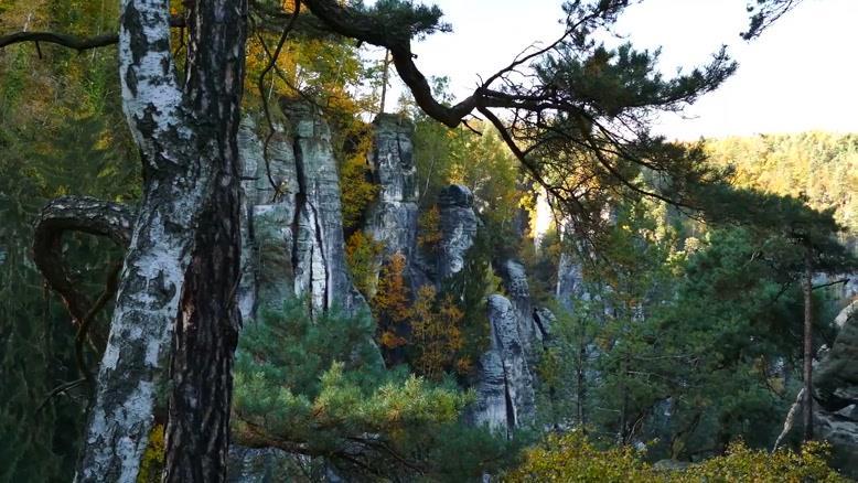 فیلم  از طبیعت زیبا  و  آرام بخش شماره ۵۱