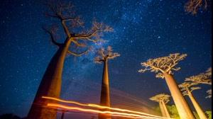 شگفت انگیزترین  اماکن و مناظر ماداگاسکار