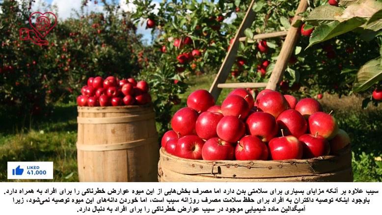 اگر دانه سیب را بخوریم چه اتفاق در بدن ما خواهد افتاد؟