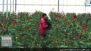 نماشا - الگویی از نسل دوم مناطق آزاد تجاری ایران