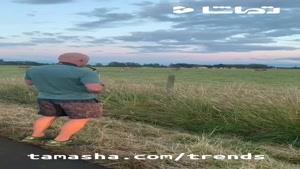 tamasha - کلیپ پربازدید روز : کنسرت ساکسیفون برای گاوها