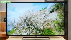 قیمت تلویزیون فیلیپس 55PFT5500