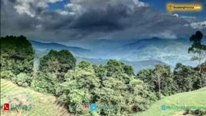 کلمبیا کشور زیبایی کریستف کلمب و درگیر با بزهکاری - بوکینگ پرشیا booki