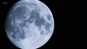 فصل دوم  مستند سیاره آبی دوبله فارسی قسمت شش