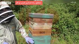 آموزش زنبورداری - روش میلر