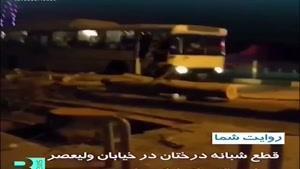 قطع شبانه درختان خیابان ولیعصرِ تهران همچنان ادامه داره !😐