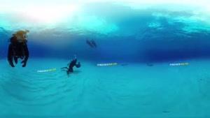 نماشا - گشت و گذار در دل اقیانوس