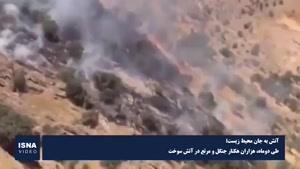 نماشا - ۱۱ هزار و ۲۵۴ هکتار از جنگلها در آتش سوخت