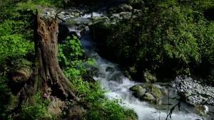 نماشا - ایران با کیفیت 4K :بهار در رشته کوه البرز