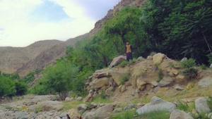آهنگ  لالیه خواننده افغان مجتبی نبی