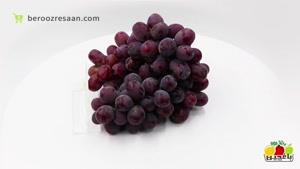 انگور سیاه درشت دستچین باغچین-به روز رسان