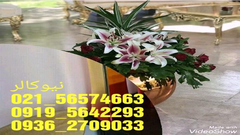تولیدکننده دستگاه آبکاری فانتاکروم 09195642293 ایلیاکالر