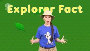 انیمیشن Ellie Explorer قسمت نه