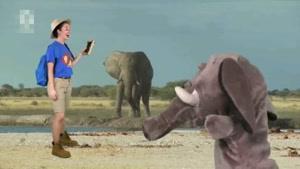 انیمیشن Ellie Explorer قسمت یک
