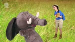 انیمیشن Ellie Explorer قسمت پنج