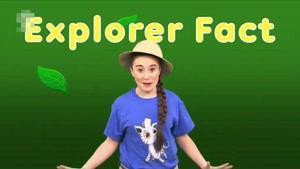 انیمیشن Ellie Explorer قسمت یازده