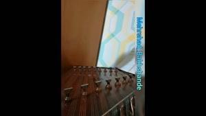 تکنوازی سنتور قطعه شورانگیز اثر استاد پرویز مشکاتیان