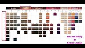 اصول آشنایی با تکنیک های کاتالوگ خوانی  رنگ مو قسمت ۳