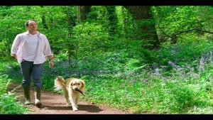 افراد تنها و نگهداری حیوان خانگی