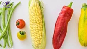 آیا رژیم گیاه خواری روش خوبی برای کاهش وزن است ؟