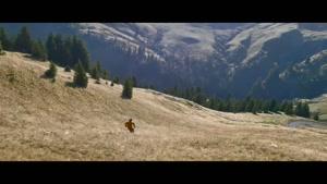 یکی از زیباترین کلیپ های اسکی روی چمن