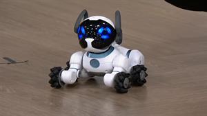 تصاویری از 10 ربات شگفت انگیز