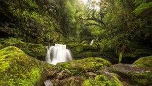طبیعت فوق العاده دیدنی نیوزلند