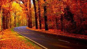 مکانهای شگفت انگیز و دیدنی در فصل پاییز