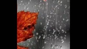 کلیپ زیبا و عاشقانه بزن باران برای وضعیت واتساپ