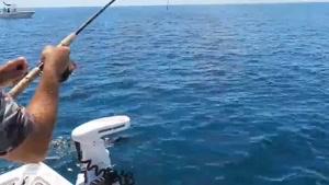 راهنمای خرید لنسر و چوب ماهیگیری