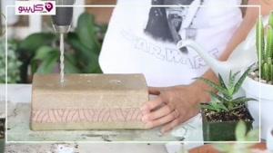 آموزش کامل ساخت دیش گاردن با کاکتوس و ساکولنت