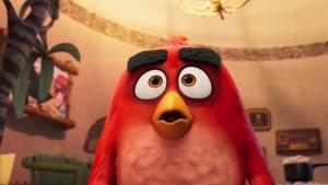 تریلر انیمیشن THE ANGRY BIRDS MOVIE 2 به زبان انگلیسی