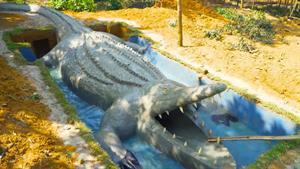 سرسره آبی به شکل تمساح دیده بودین ؟