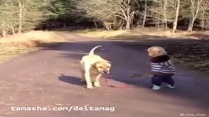 سگ باهوش و بچه بازیگوش