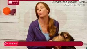 آموزش مکان دستشویی به سگ خانگی