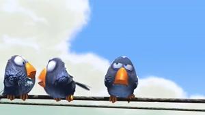 انیمیشن کوتاه پرندگاه خنده دار Funny Birds