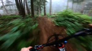 دوچرخه سواری فوق العاده مهیج در جنگل