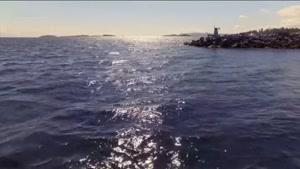 سریال سواحل چساپیک دوبله فارسی قسمت 5