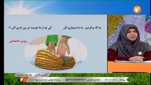 آموزش فارسی و نگارش چهارم ابتدایی