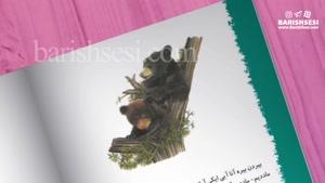 معرفی کتاب آییلار به زبان ترکی آذربایجانی
