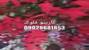 آموزش دستگاه مخمل پاش 09028681853