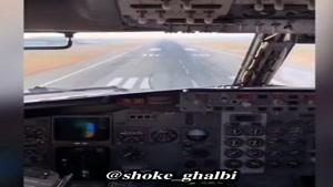 برخورد کبوتر به کابین هواپیما