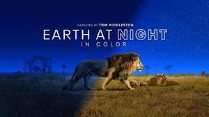 زمین در شب 1