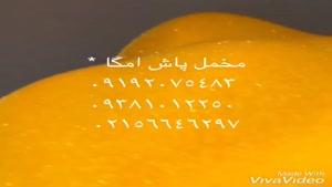 لیست قیمت پودر مخمل 09192075483 دستگاه مخمل پاش *پودر مخمل ت