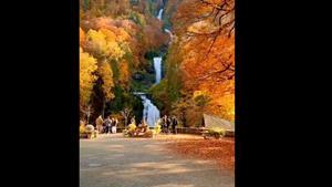 کلیپ زیبای پاییزی برای وضعیت واتساپ