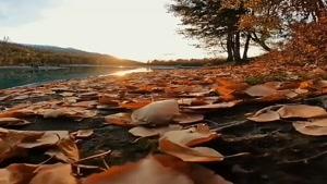 کلیپ صبح بخیر پاییزی / طلوع پاییزی