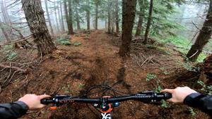 لحظاتی هیجانی و دیدنی از دوچرخه سواری در جنگل