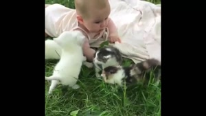 کلیپ بچه بامزه با گربه ها