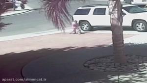 گربه شجاع و نجات کودک