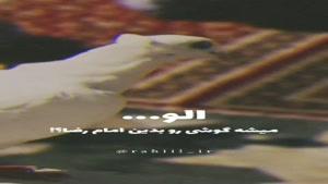 کلیپ تولد امام رضا برای استوری / کلیپ ولادت امام رضا